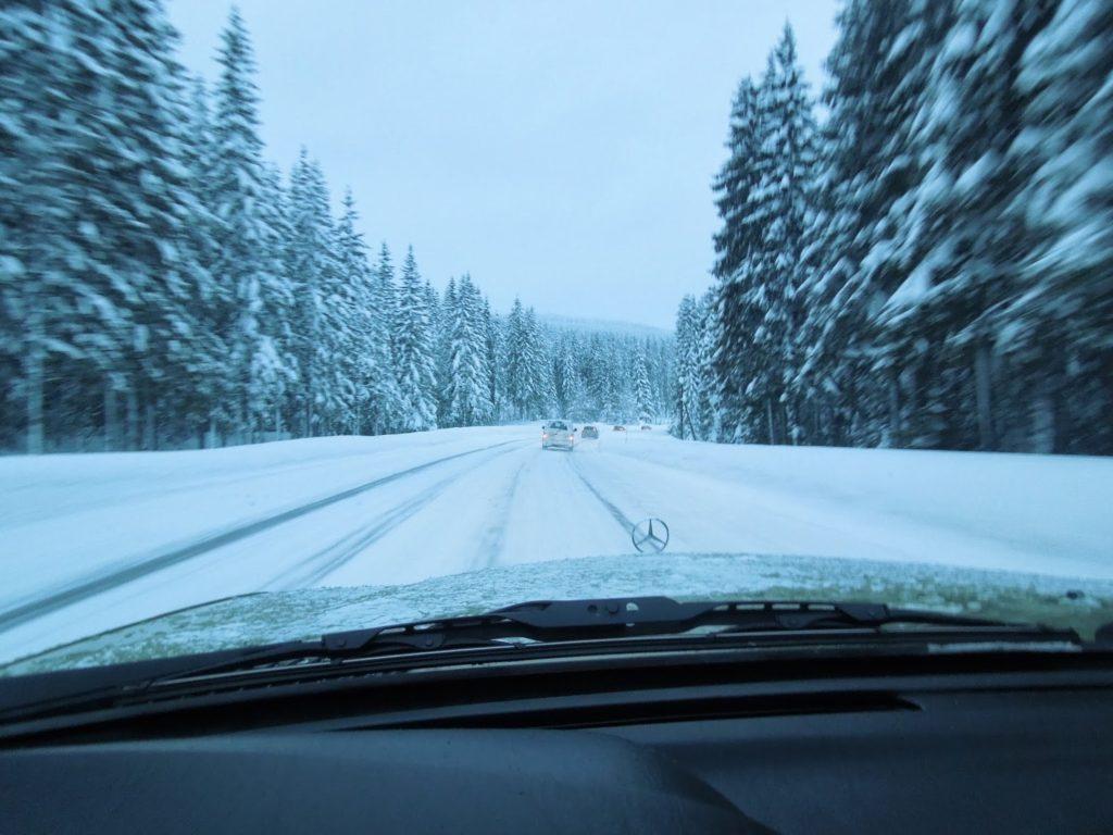 w123 in winterlandscape